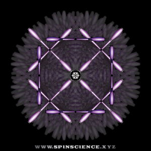 Spin Science 1 to 5 Flowers - 4 Petal Inspin and 6 Petal Antispin - Perpendicular Shapes