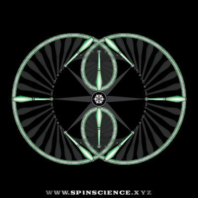 Spin Science - Club Flowers 19 - 2 Petal Inspin - Vertical