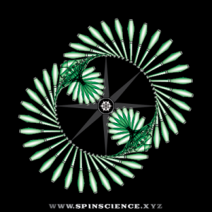 Spin Science - Club Flowers 21- 2 Petal Inspin - Lean Left